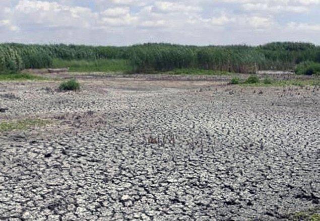"""""""Göl atık alanı olarak kullanılmaktan vazgeçilmeli"""""""