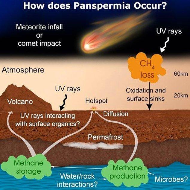 Panspermia teorisi temelde 3 aşamadan oluşur.