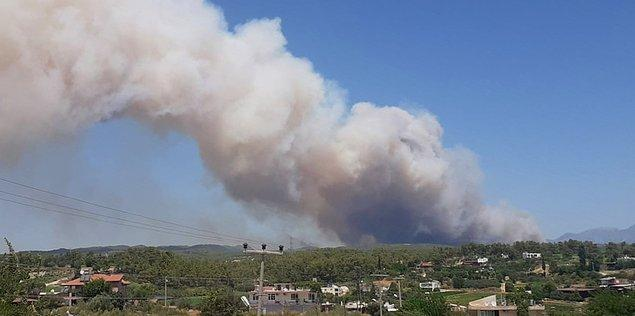 Yangın, bölgedeki yerleşim yerleri ve tarım alanlarının yanı sıra hayvanların barındığı noktalara da yayıldı.