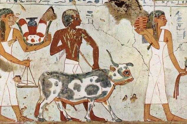 Kurban ayinleri, her medeniyette olduğu gibi Mısır medeniyetinde de vardı.