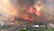 Antalya Manavgat'ta Büyük Yangın!  Antalya Manavgat'ta Yangın Neden Çıktı?