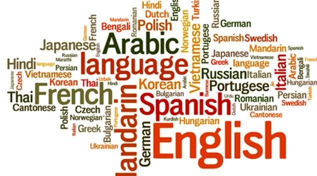 5. Yabancı dile karşı ilgili misin?