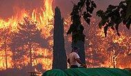 Bakan Pakdemirli: '1 Kişi Hayatını Kaybetti, Toplam 34 Köy ve Mahalle Boşaltıldı'