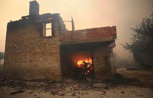 Birçok ev, sera ve tarım alanı da küle döndü