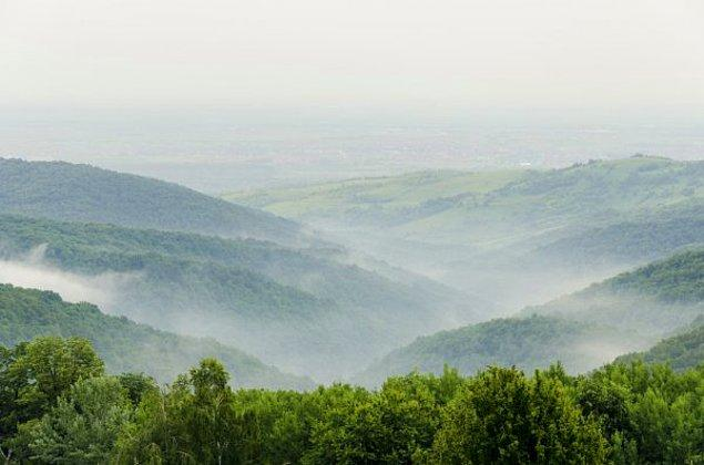 2. Fruška Gora Ulusal Parkı