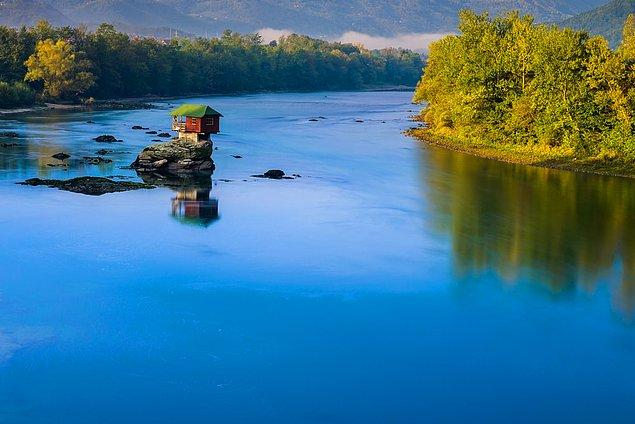 14. Tara Ulusal Parkı