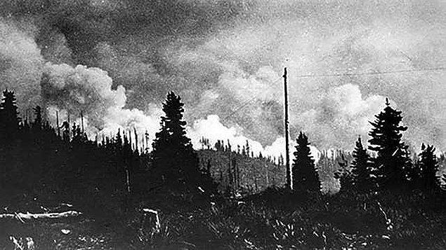 1910 Büyük Ateşi (Big Burn), ABD