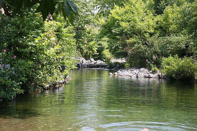 18.05 - Balıkesir Valiliği ormanlara girişleri uzun süre için yasakladı