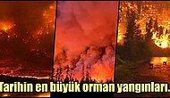 Dünyanın En Büyük Orman Yangınları Nerelerde Oldu?