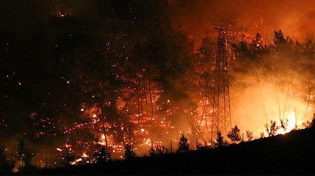 Türkiye'nin dört bir yanından yangın haberleri geliyor, son günlerde hepimizin içini dağlayan olaylar yaşanıyor.