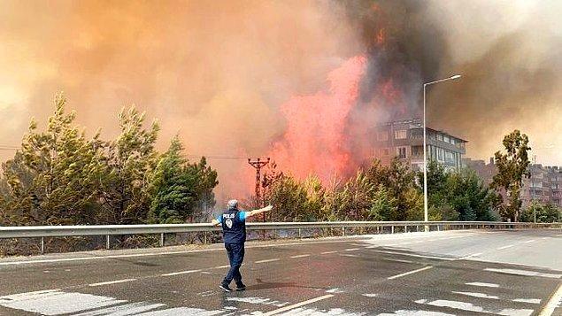 Bazı ekologlar, Akdeniz ormanlarının zaten birkaç milyon yıldır yanmakta olduğundan bahsetti.
