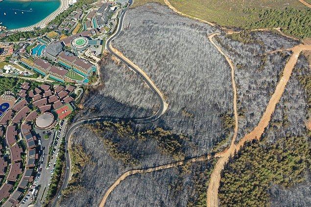Havadan çekilen görüntülerde, yangının otellerin bulunduğu bölgeye kadar geldiği görülüyor.