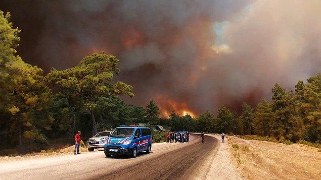 Son birkaç gündür ülkemizin dört bir yanında çıkan orman yangınları hepimizi derinden üzdü ve olanı biteni endişeyle takip ediyoruz hala.