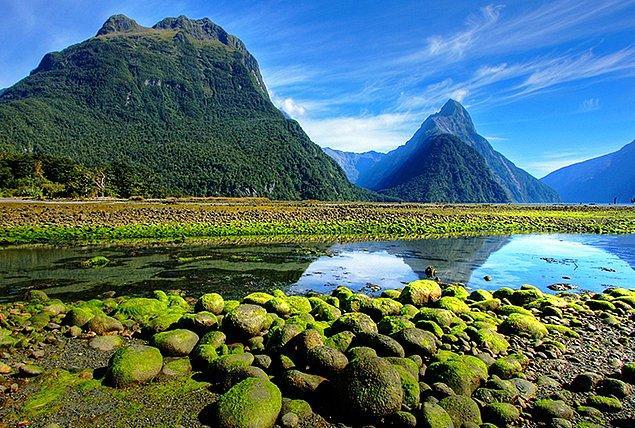 1. Yeni Zelanda