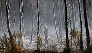 CHP'den Orman Yangınlarının Araştırılması İçin Önerge