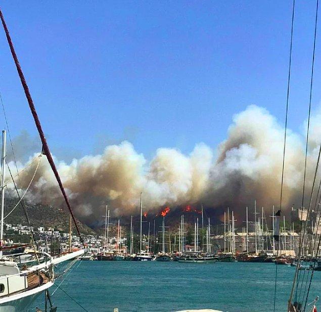 Ülkemizin dört bir yanını saran yangınlar hepimizi kahrediyor...