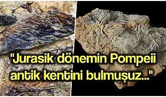 Jurasik Dönemden Kalma Deniz Mezarlığında Uzaylıya Benzeyen Canlı Türleri Bulundu