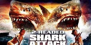 İki Başlı Köpek Balığı Konusu Nedir? İki Başlı Köpek Balığı Filmi Oyuncuları Kimlerdir?