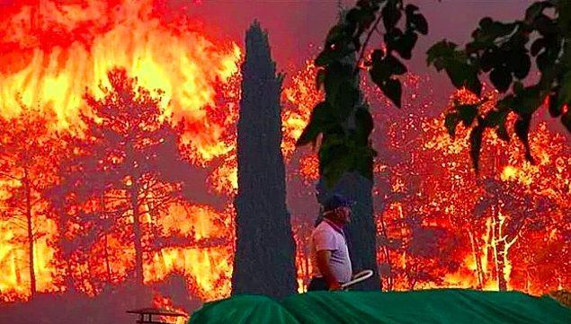 Ülkemizin sahillerinden alevler yükseliyor, ormanlarımızla birlikte kalbimiz de yanıyor. Peş peşe gelen yangın haberleriyle daha da kahroluyoruz, elimiz kolumuz bağlı yetkililerin işlerini yapmasını bekliyoruz...