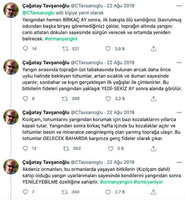 Hacettepe Üniversitesi Öğretim Üyesi Prof. Dr. Çağatay Tavşanoğlu, ağaç dikme seferberliğinin yanlış olduğunu ve bu ormanların kendini yenileyebileceğini söyledi.