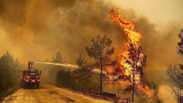 Biliyorsunuz ki 4 gündür Türkiye'nin çeşitli bölgelerinde yangınlar çıkıyor ve kontrol altına alınamadıkları için etki alanları da genişlemeye devam ediyor.