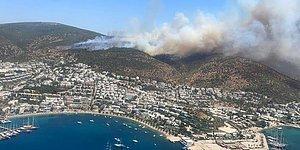 Ortamlarda 'İtiraz' Edersiniz: Ormanların Yağmalanmasının Önünü Açan Kanuna Muhalefet 'Ret' Oyu Vermemiş...