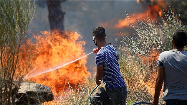 Günlerdir bölgede bulunan vatandaşlar kısıtlı imkanlarla bu büyüyen ateşi söndürmeye çalışıyor fakat ne yazık ki bu çaba yeterli olmuyor.