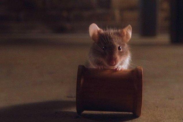 7. Filmdeki ünlü fare Mr. Jingle tek bir karakter gibi görünse de aslında 15 farklı farenin rol aldığı bir karakter.