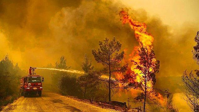 Söndürülemeyen yangınlar günlerdir hepimizin ciğerini yakıyor, bir şeyler yapmaya çalışıyoruz ama yeterli kalmıyor.