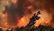Orman Yangınları 6. Gününde: Antalya, Muğla, Isparta, Denizli ve Adana Yanıyor!