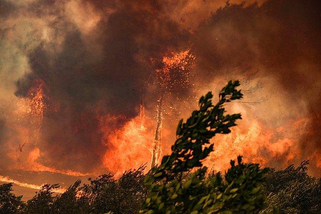 15.30 sularında Adana'da da yangın çıktı
