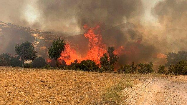 17:06 Muğla'da iki ayrı yangın daha