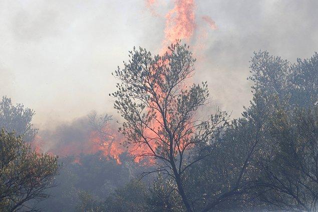 18:45 Muğla'nın Seydikemer ilçesinde çıkan yangın zeytin bahçelerine ulaştı.