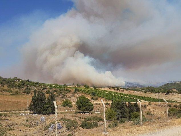 20:00 Adana'da tarlada başlayıp ormanlık alana sıçrayan yangın havadan ve karadan müdahaleyle kontrol altına alındı.