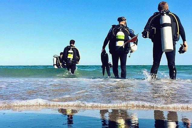 """4. """"Ailemle beraber dalmaya gitmiştik. Planımız kumsaldan küçük bir resife yüzmek, oradan da daha derine dalmaktı. Resife gittikten sadece birkaç dakika sonra annemle babam arasında bir şeyler olmaya başladı."""""""