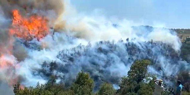 22:13 İzmir'in Gaziemir ilçesinde çıkan orman yangını, ekiplerin müdahalesiyle söndürüldü.