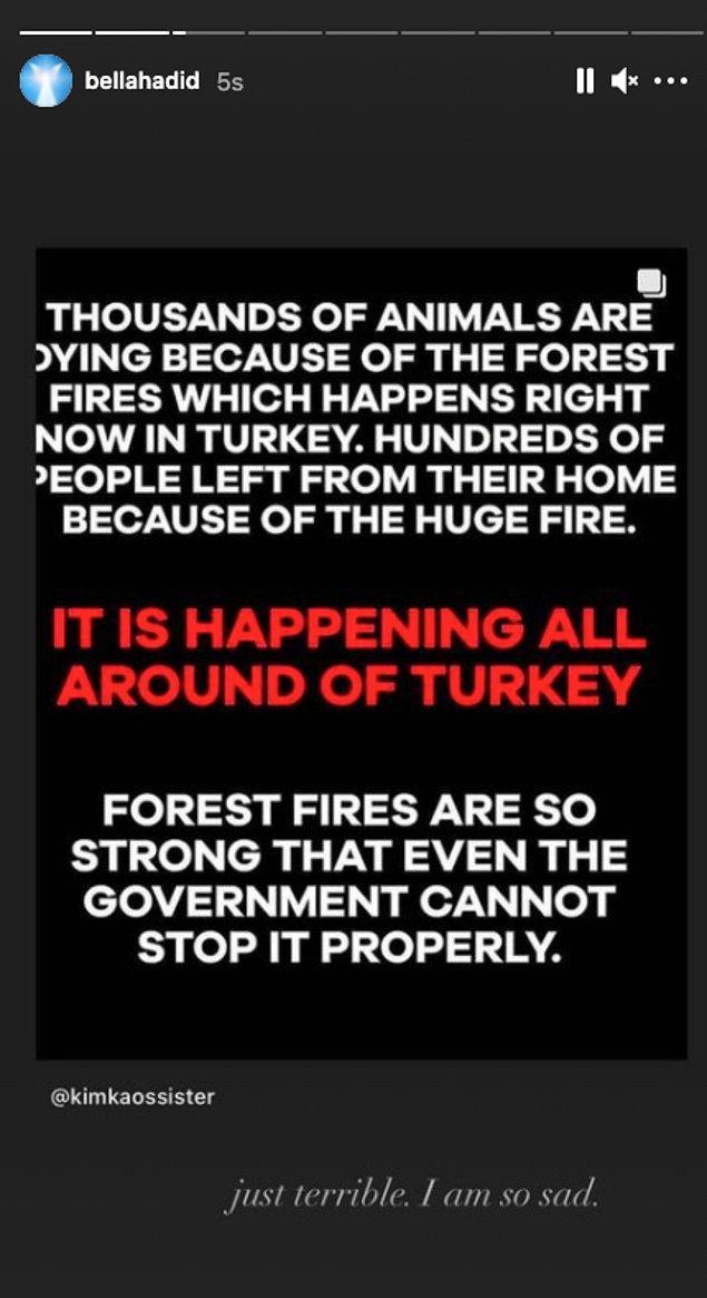 """""""Şu anda Türkiye'de yaşanan orman yangınları yüzünden binlerce hayvan hayatını kaybediyor. Devasa yangın nedeniyle yüzlerce insan evlerini terk etti."""""""