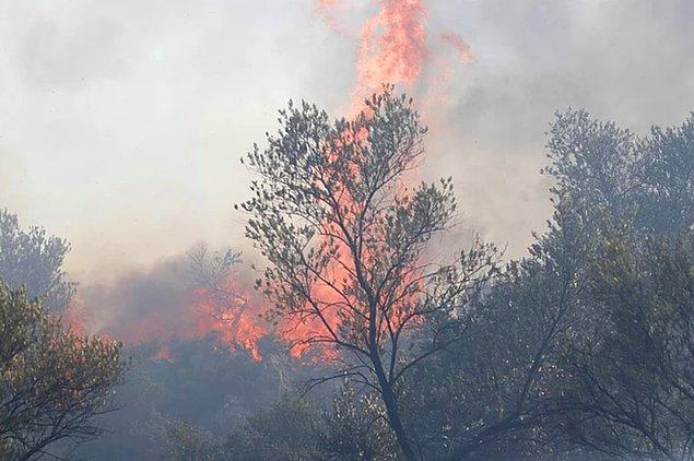 Yangın bölgelerindeki halkımız ise ellerindeki imkanlarla canları pahasına alevlere müdahale etmeye çalışıyor.