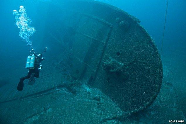"""12. """"16 yaşındayken Grenada'da bir gemi enkazına tüplü dalış yapıyordum. Daldığımız yerin yaklaşık derinliği 20-30 metreydi. Eğitmenim dalıştan önce suda köpek balıklarının olabileceğini söylemişti."""""""