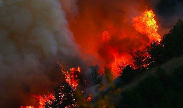 12:00 | Yangından dolayı hayatını kaybedenlerin sayısı 9'a yükseldi