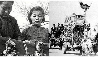 """Dünya Tarihinden Çok İlginç Bir Hikaye: """"Çin'i Felakete Sürükleyen Serçeler"""""""