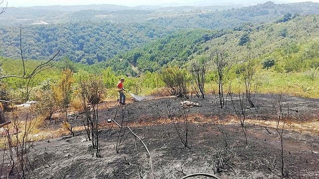 14:39 Zonguldak'ın Ereğli ilçesinde çıkan orman yangını büyümeden söndürüldü.
