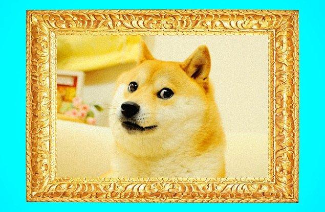 4. DOGE