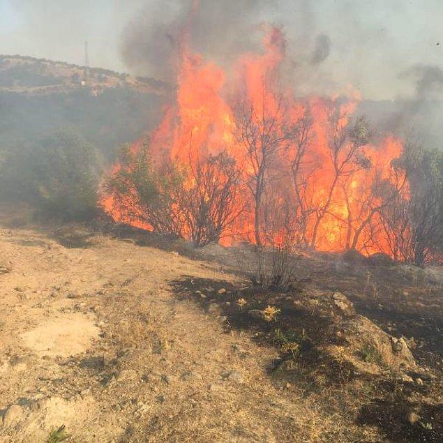 20:10 Balıkesir'deki yangın kontrol altında