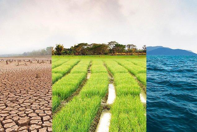 İklim krizi karşısında yetersiz politikalar