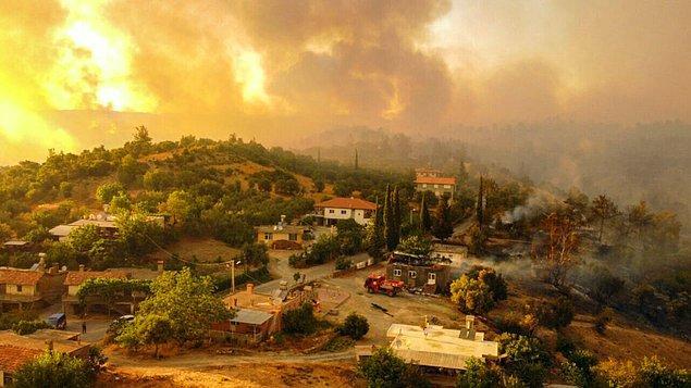 Orman Yangınlarının Nedenleri: