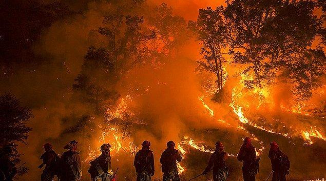 Günlerdir süren yangınlar hepimizi derinden üzüyor ve yangın söndürme filosunun yetersizliği öfkelendiriyor.