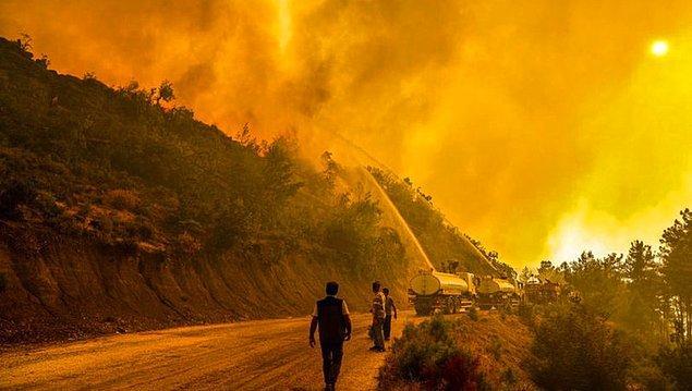 Günlerce dinmeyen Manavgat yangını büyük ölçüde bitse de hala daha tamamen geçmiş değil. Yangının büyük bölümü bitti evet, çünkü daha fazla yanacak yer kalmadı.