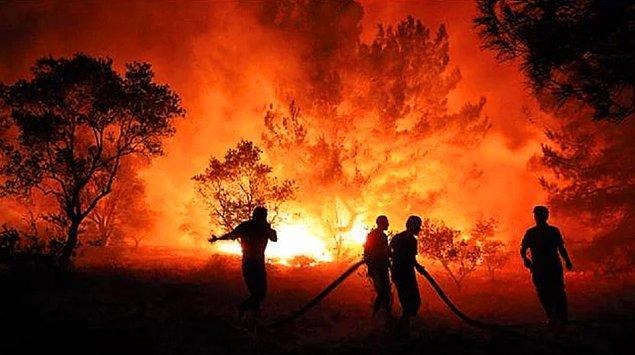 1. Bodrum Milas'taki yangına en ön sıralarda yardım eden İbrahim Çelikkol'u ayakta alkışladık!