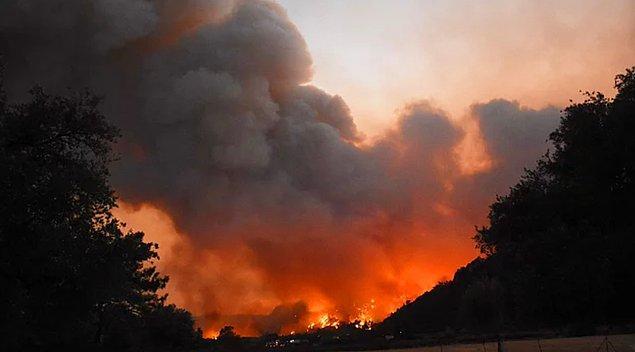 Ülkemizdeki orman yangınlarından dolayı hepimiz kahrolmuş bir haldeyiz ve artık içimizdeki acıyı anlatacak kelime bulamıyoruz.